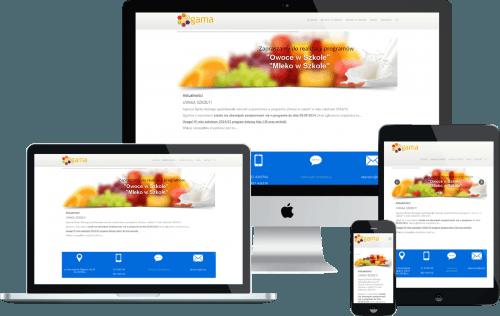Responsywna strona internetowa dla firmy dostarczającej owoce i warzywa do szkół